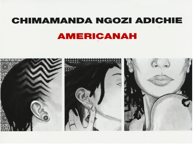 "I CONSIGLI DI LETTURA DI ALI : ""Americanah"" – Chimamanda Ngozi Adichie"